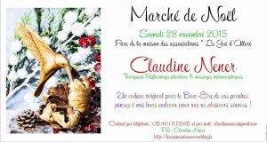 Marché de Noël 2015 12234960_1127497540595622_8601500331071261671_n-300x160